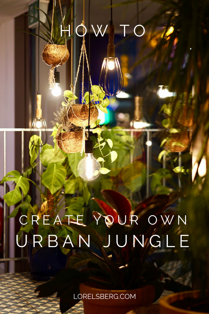 How to turn your flat into an urban jungle #urbanjungle #gardening #plants