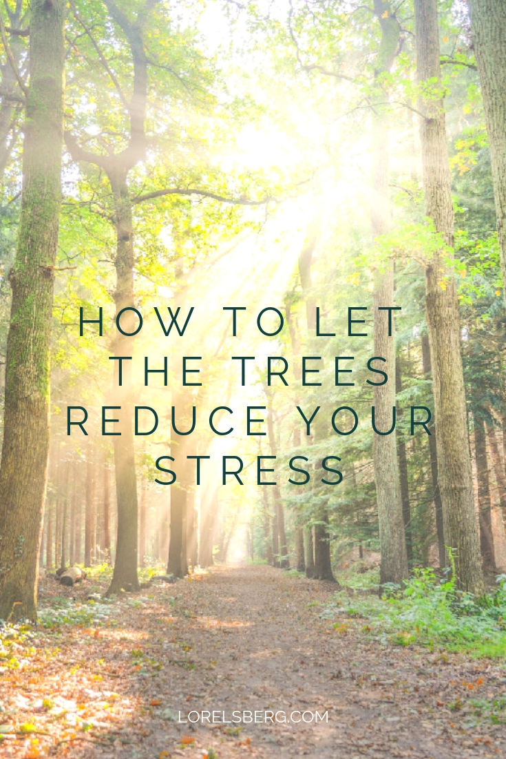 How to let the trees reduce your stress