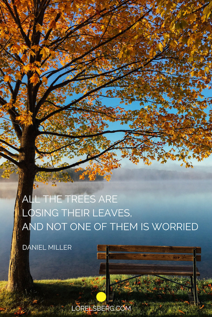 ALL THE TREES ARE LOSING THEIR LEAVES, AND NOT ONE OF THEM IS WORRIED
