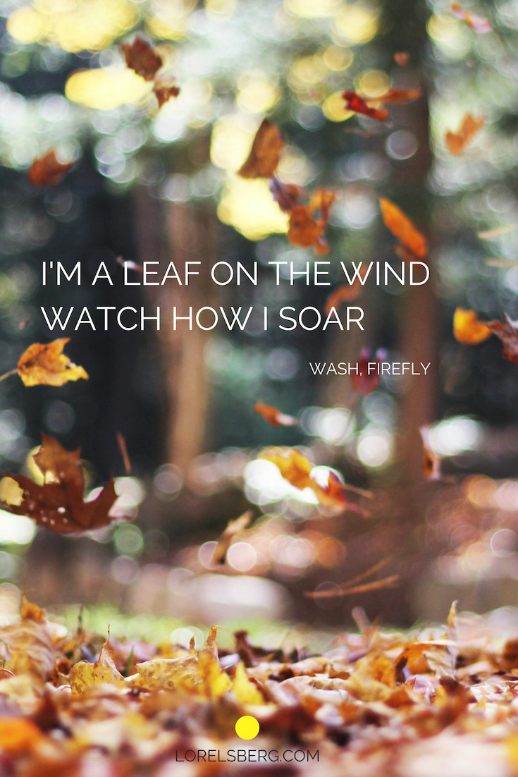 I'm a leaf on the wind, watch how i soar