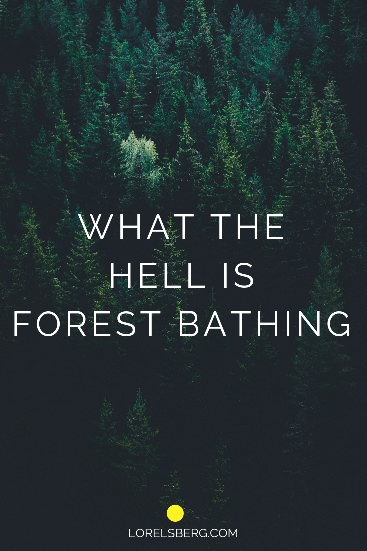 What the hell is forest bathing?