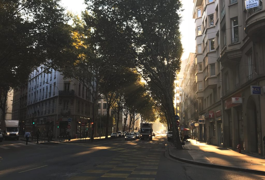 Sun shining through the tree tops on a tree lined street in a French city